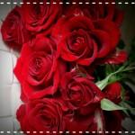 バレンタインには色の持つ力(色彩心理)を用いて効果的な贈り物に(赤編)