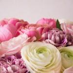 食用花エディブルフラワーってご存知ですか?そしてその種類は?