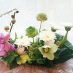 バースデープレゼントや記念日、母の日、父の日にはお祝いの気持ちを込めた花を贈りませんか