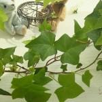 母の日・父の日ギフト・フラワーアレンジメントにあったら便利な花材