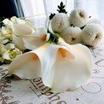 お誕生日に贈る花ギフト